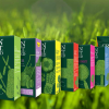GREEN VELVET grass seed