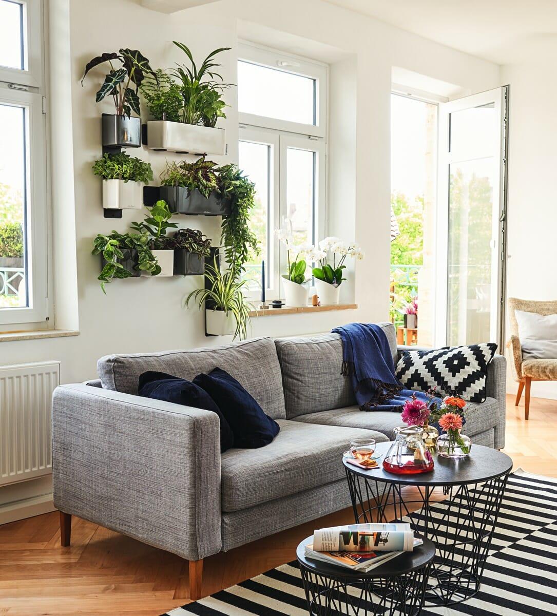 Green Wall Home Kit