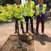 Haskins in Ferndown donates tree to Poole Hospital