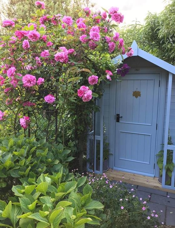 Posh Shed in partnership with Alzhemier's Soceity