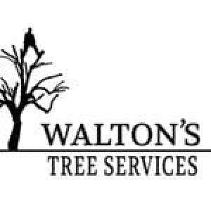 Walton's Tree Services