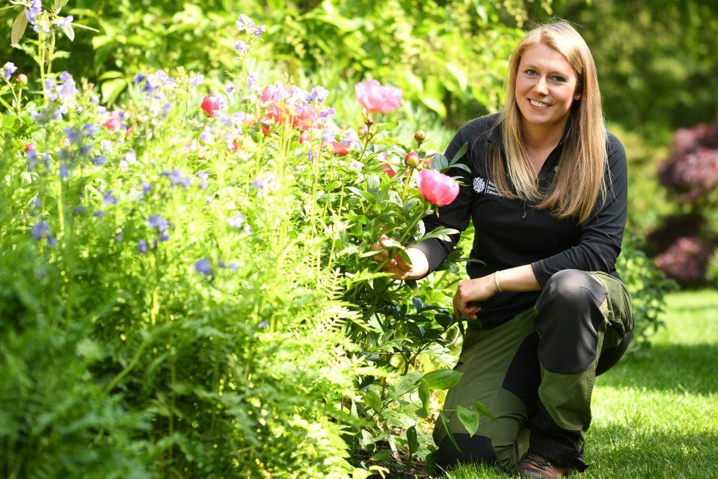 Tips for a Green Garden