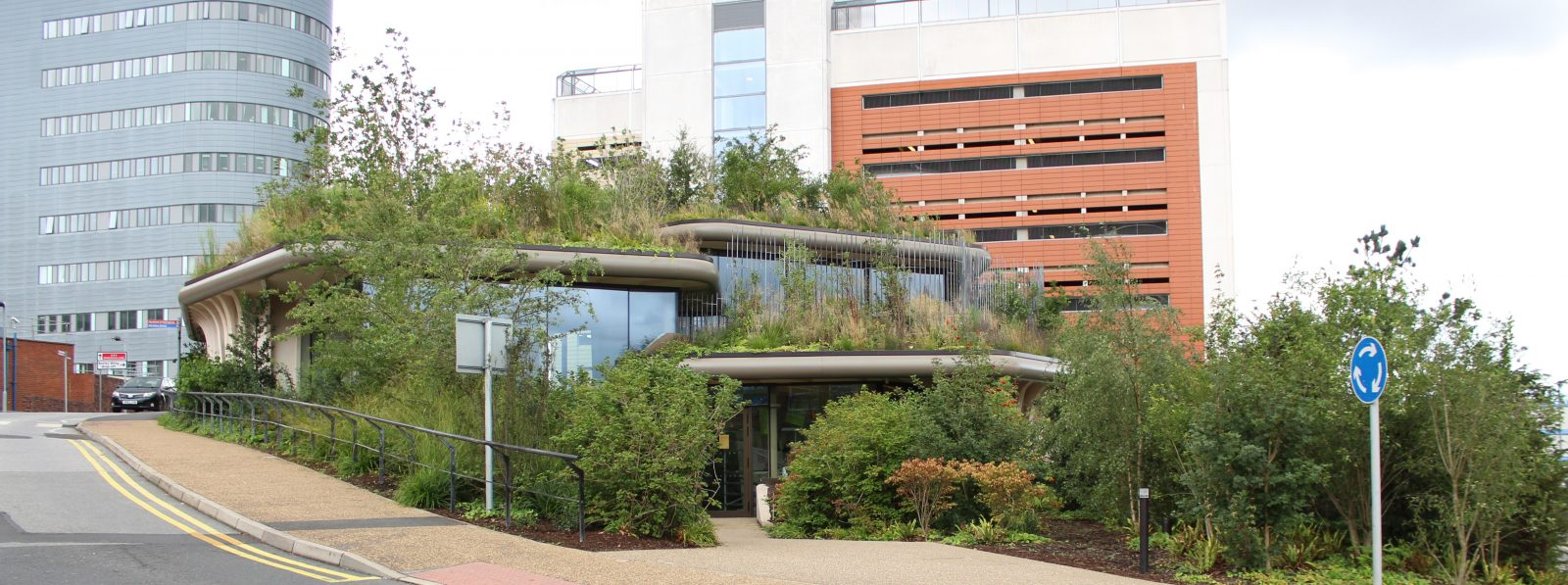 rooftop garden of the Maggie's Centre Cancer Charity