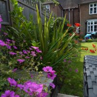 Family Garden – 45 Rotherwick GG (22)