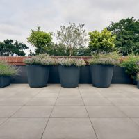 Finchley Roof Garden Design Services