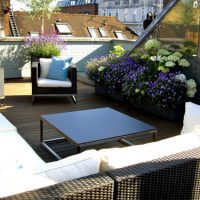 Weather Exposed Garden Design London seating with planting