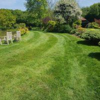 Cranleigh customers Lawn