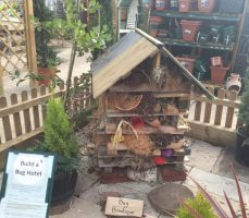 Wyevale Garden centre Royston review
