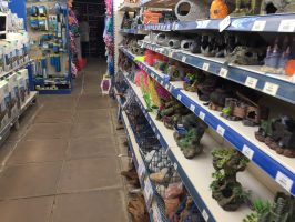Burston Garden Centre review